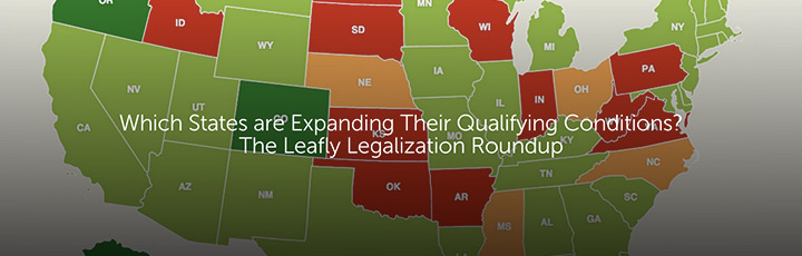 Which States are Expanding Their Qualifying Conditions? The Leafly Legalization Roundup