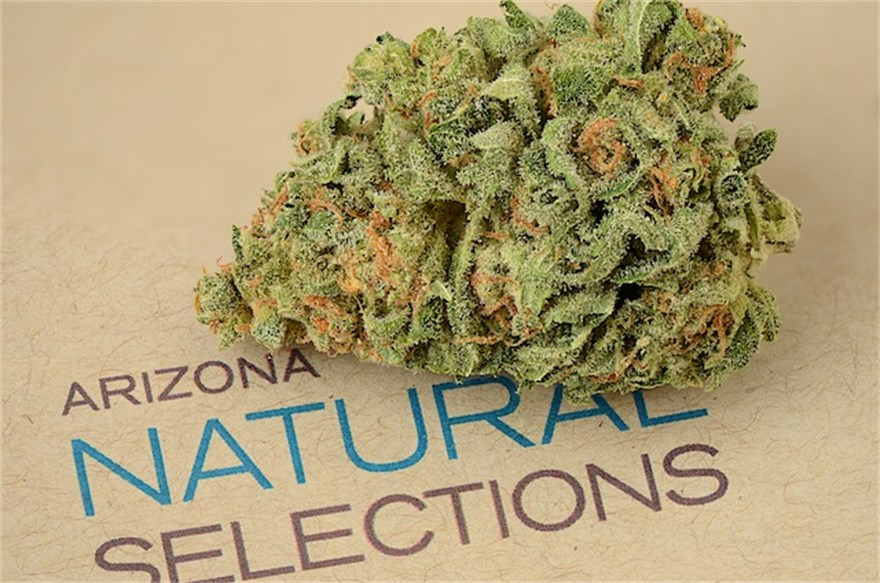 Arizona Natural Selections of Peoria, AZ