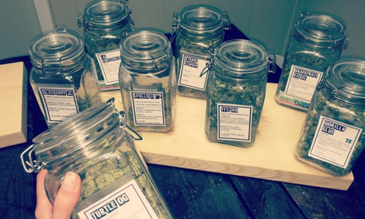 Lake Effect medical cannabis dispensary in Portage, Michigan