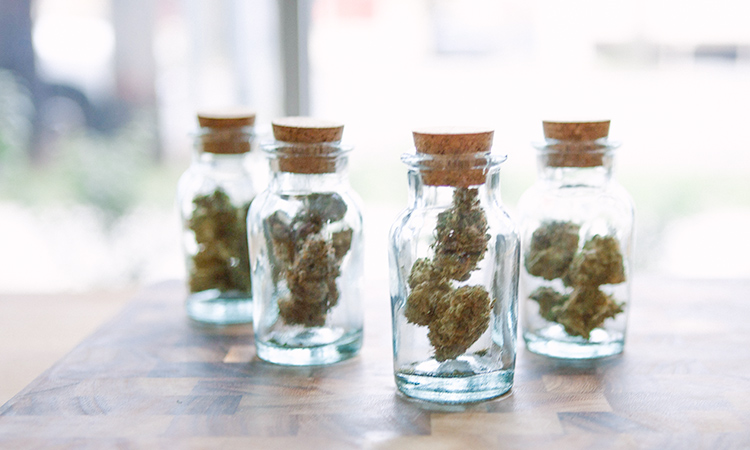 A collection of cannabis in jars