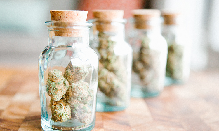 A lineup of jars containing cannabis