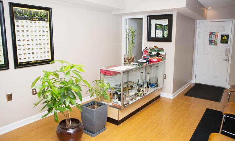 Herbal Solutions medical marijuana dispensary in Ypsilanti, Michigan
