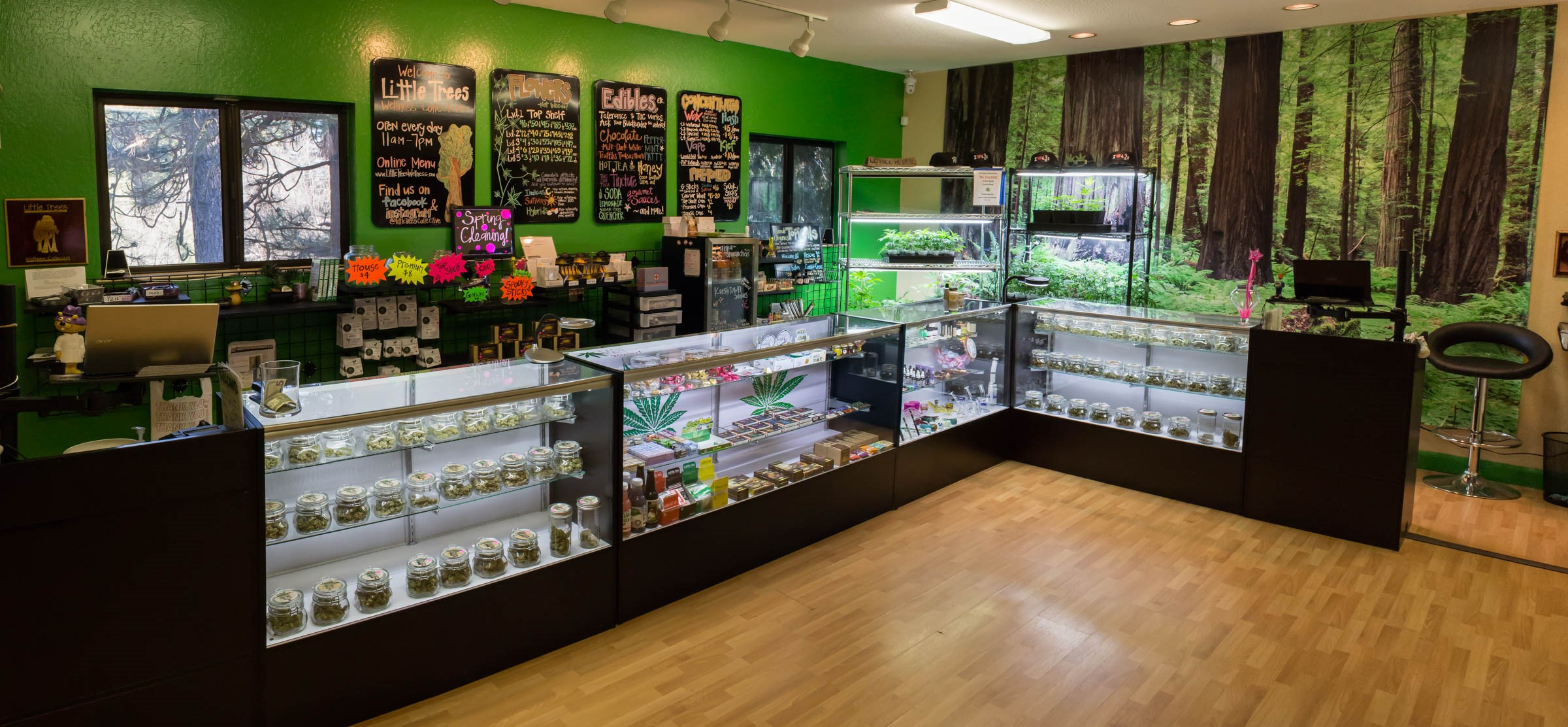 Little Trees medical marijuana dispensary in Arnold, California