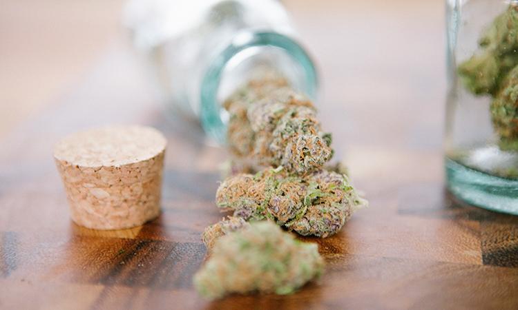 Leafly cannabis
