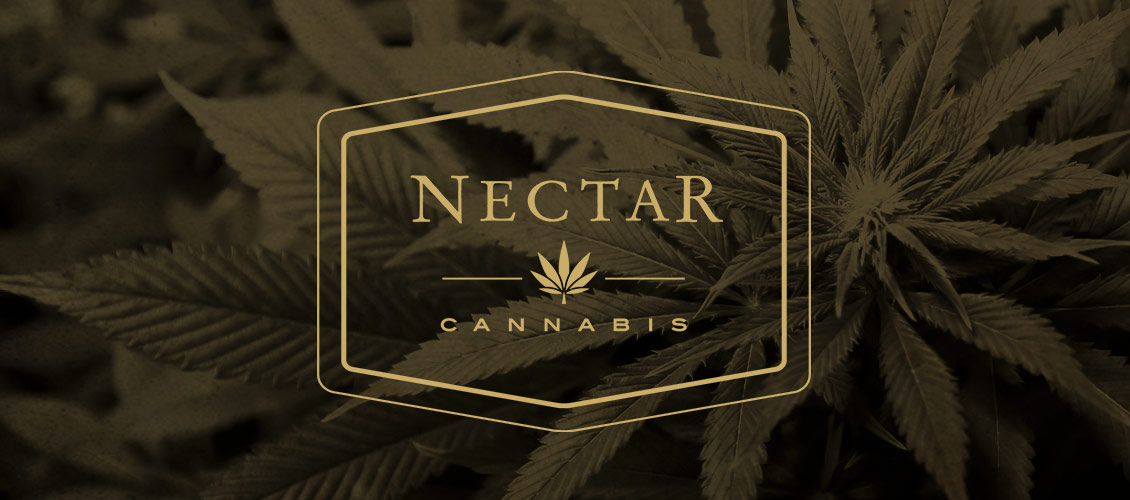 Nectar medical marijuana and recreational cannabis dispensary on Sandy Blvd in Portland, OR
