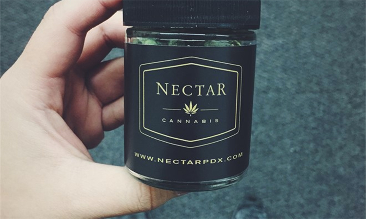 Nectar Eugene medical marijuana and recreational cannabis dispensary in Eugene, Oregon