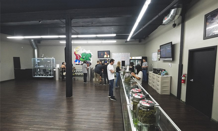 TLC Collective medical cannabis dispensary in Los Angeles, California