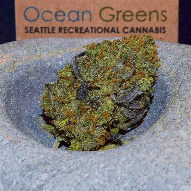 Ocean Greens cannabis dispensary in Seattle, Washington