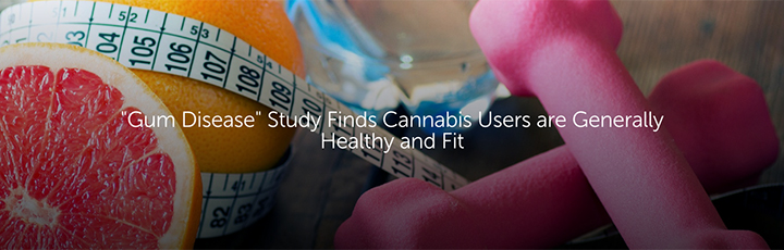 """""""Gum Disease"""" Study Finds Cannabis Users are Generally Healthy and Fit"""