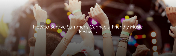 How to Survive Summer's Cannabis-Friendly Music Festivals