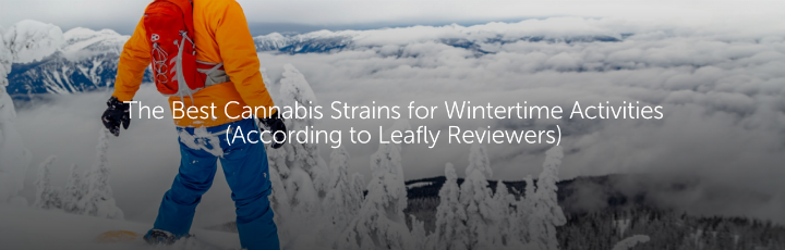 The Best Cannabis Strains for Wintertime Activities (According to Leafly Reviewers)