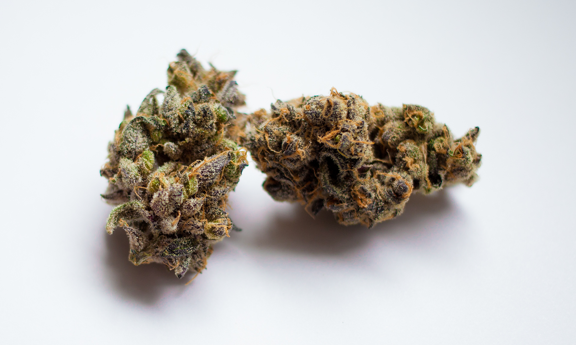Top Shelf GDP