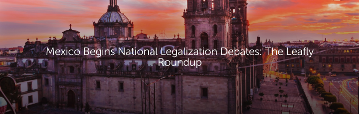 Mexico Begins National Legalization Debates: The Leafly Roundup