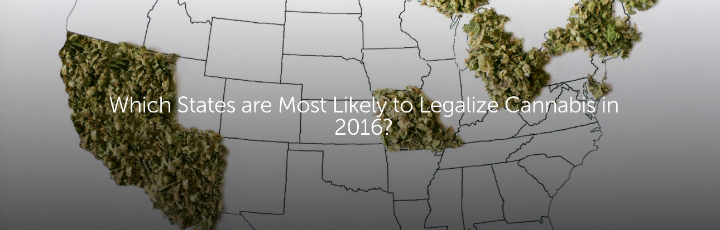Which States are Most Likely to Legalize Cannabis in 2016?