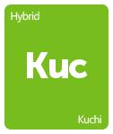 Leafly Kuchi cannabis strain tile