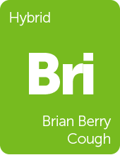 Leafly Brian Berry Cough cannabis strain tile