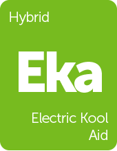 Leafly Electric Kool Aid cannabis strain tile