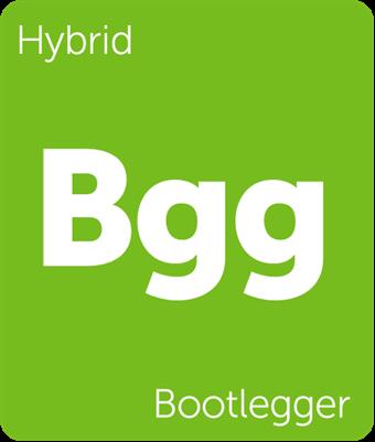Leafly Bootlegger hybrid cannabis strain tile