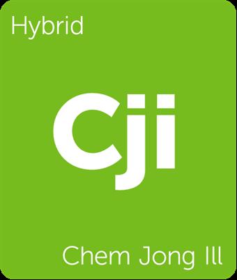 Leafly Chem Jong Ill hybrid cannabis strain tile