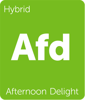 Leafly Afternoon Delight hybrid cannabis strain tile