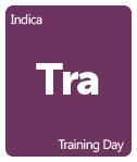 Leafly Training Day cannabis strain tile