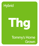 Leafly Tommy's Home Grown cannabis strain tile