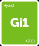 Leafly GI001 cannabis strain tile