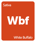 Leafly White Buffalo cannabis strain tile
