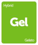 Leafly Gelato cannabis strain tile