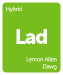 Leafly Lemon Alien Dawg cannabis strain tile