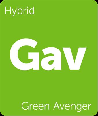 Leafly Green Avenger hybrid cannabis strain tile