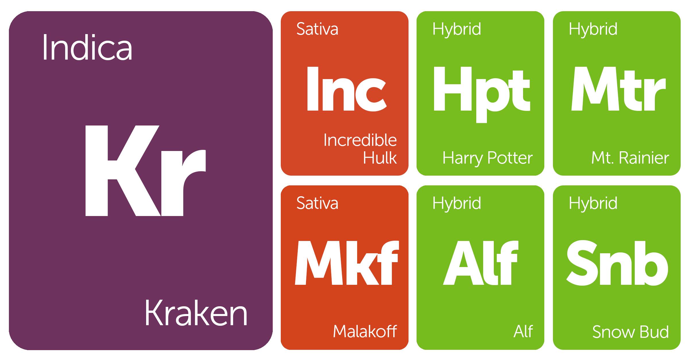 New Strains Alert: Kraken, Harry Potter, Incredible Hulk, Mt. Rainier, and More