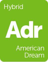 Leafly American Dream cannabis strain tile