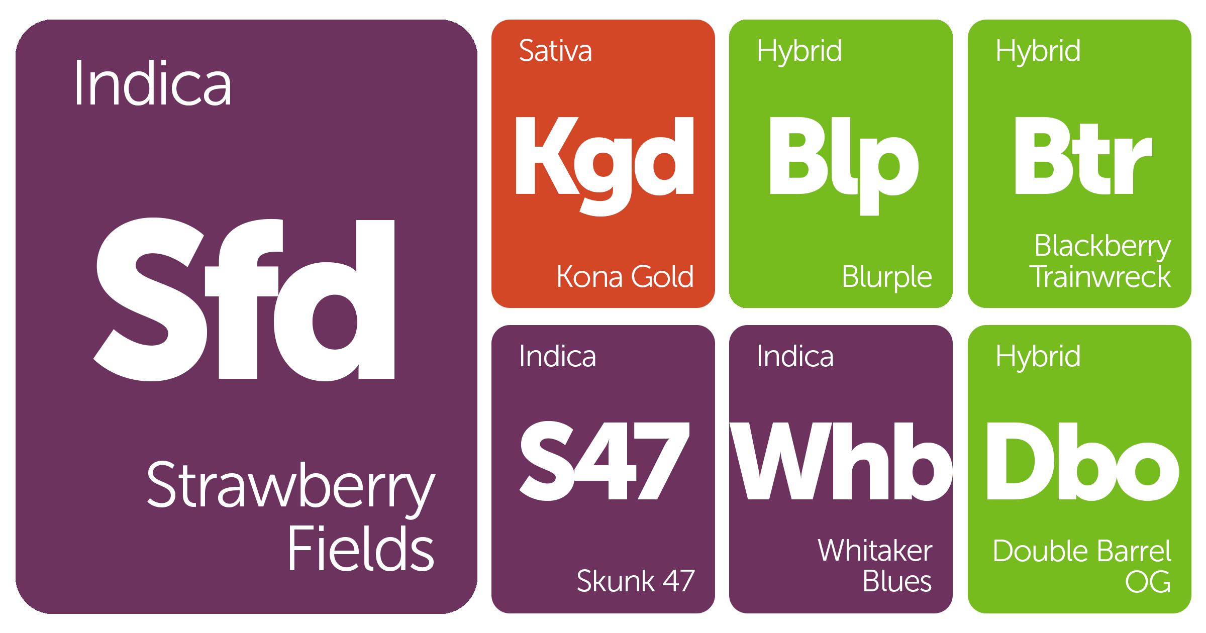 New Strains Alert: Strawberry Fields, Kona Gold, Blurple, Blackberry Trainwreck, and More