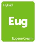Leafly Eugene Cream cannabis strain tile