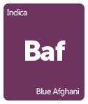 Leafly Blue Afghani cannabis strain tile
