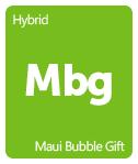 Leafly Maui Bubble Gift cannabis strain tile