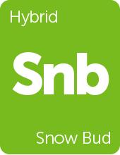Leafly Snow Bud cannabis strain tile