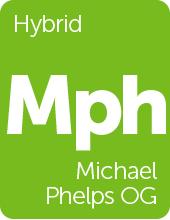 Leafly Michael Phelps OG cannabis strain tile