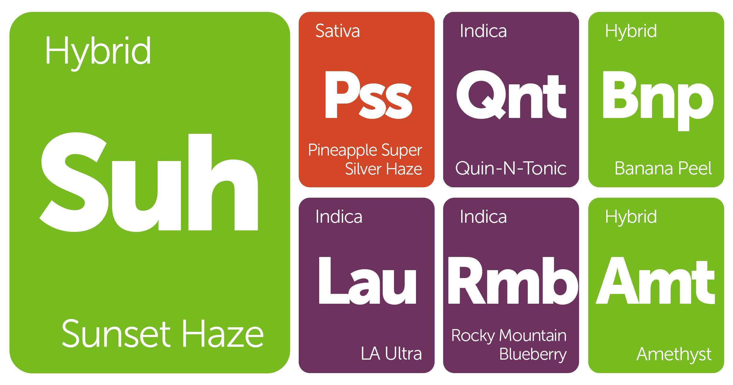 New Strains Alert: Sunset Haze, LA Ultra, Pineapple Super Silver Haze, Banana Peel, and More
