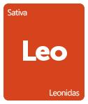 Leafly Leonidas cannabis strain tile