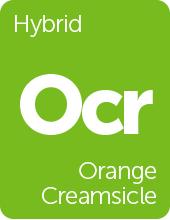 Leafly Orange Creamsicle cannabis strain tile