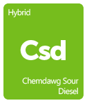 Leafly Chemdawg Sour Diesel cannabis strain tile