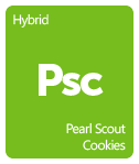 Leafly Pearl Scout Cookies cannabis strain tile