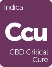 Leafly CBD Critical Cure cannabis strain tile