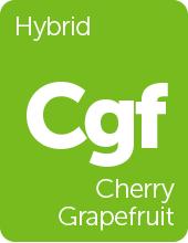 Leafly Cherry Grapefruit cannabis strain tile