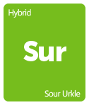 Leafly Sour Urkle cannabis strain tile