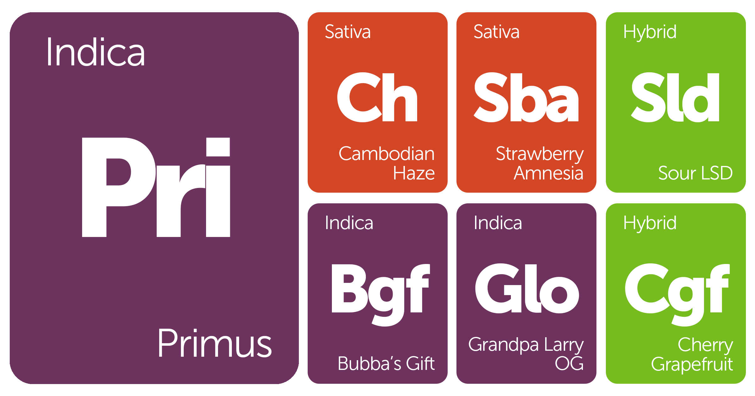 New Strains Alert: Primus, Sour LSD, Strawberry Amnesia, Bubba's Gift, and More