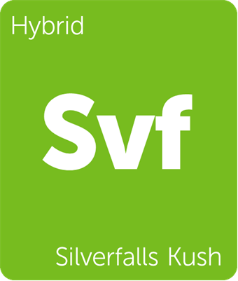 Leafly Silverfalls Kush hybrid cannabis strain tile