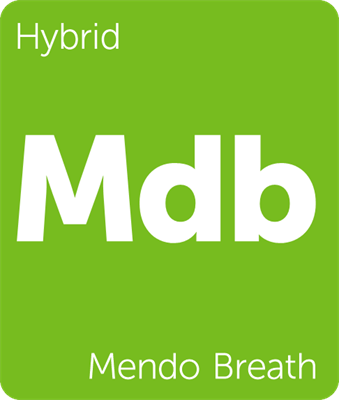 Leafly Mendo Breath hybrid cannabis strain tile